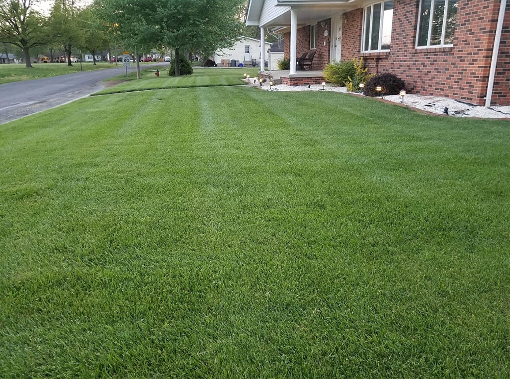 overseeding & aeration after highland il