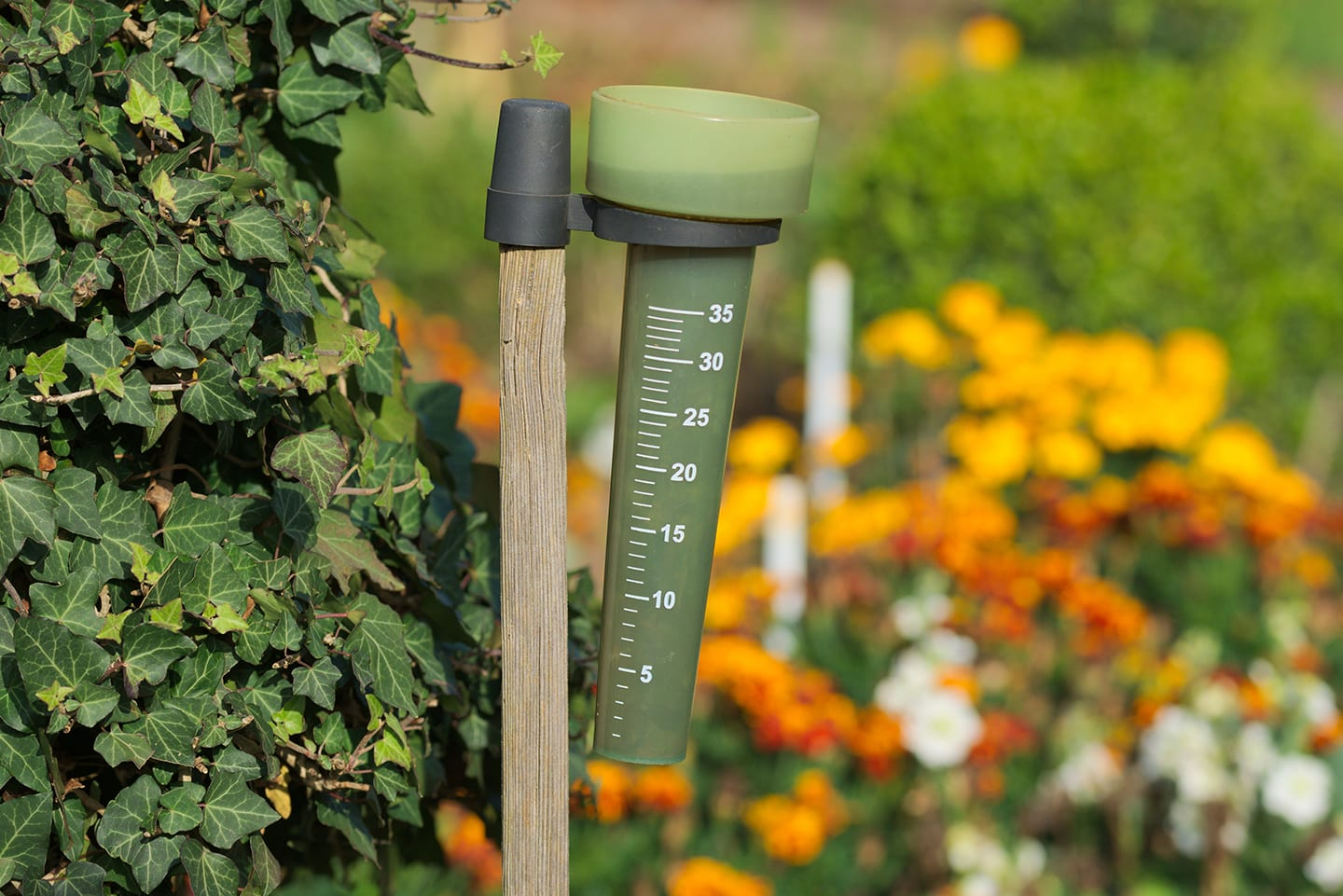 rain gauges help with your water conservation