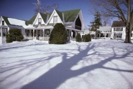 winter lawn care tips in O'Fallon Illinois