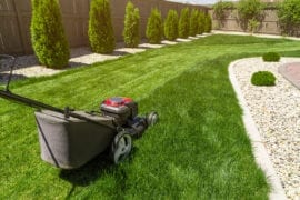landscape maintenance columbia il