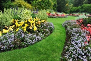 landscaping service columbia il