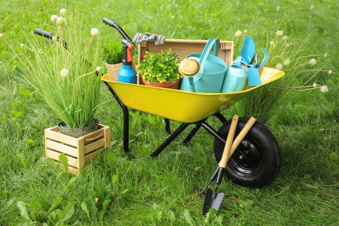 lawn care troy Illinois